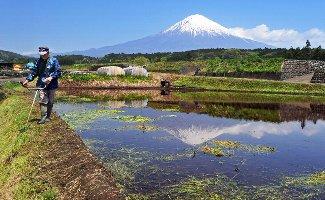 棚田に浮かぶ逆さ富士