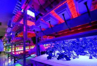 未来の植物工場