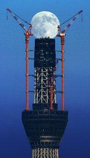 地上470メートルの競演 東京スカイツリー、中秋の名月と