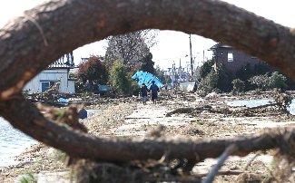木が倒れたあぜ道を、手をつないで歩く男女